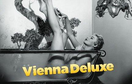 Vienna Deluxe Challenge Satellites